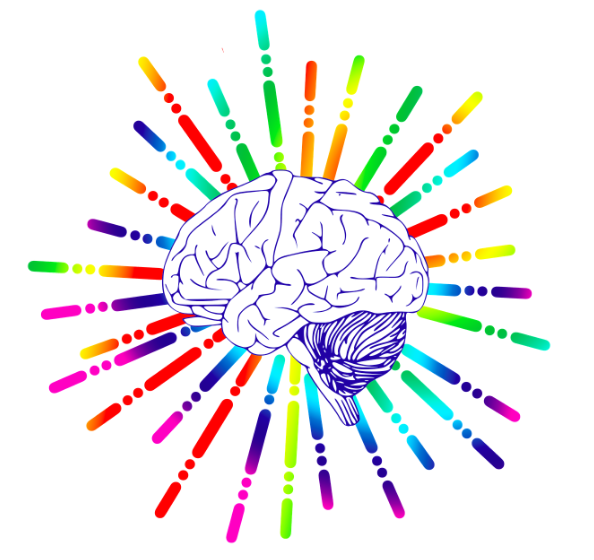 Service Service ILMAO Coaching en Psychologie Positive